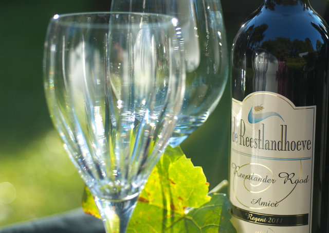 ©  6309025070 Wijngoed de Reestlandhoeve.jpg