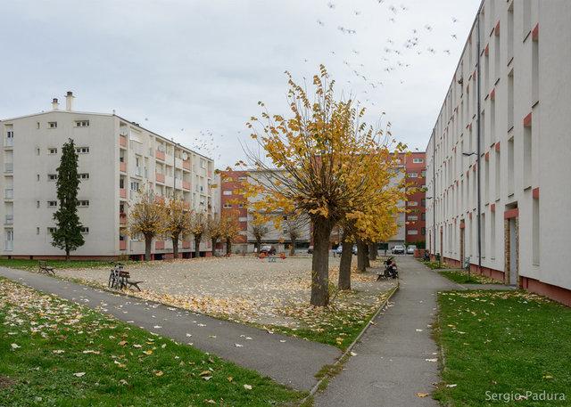 13 Nov15, Starsbourg.