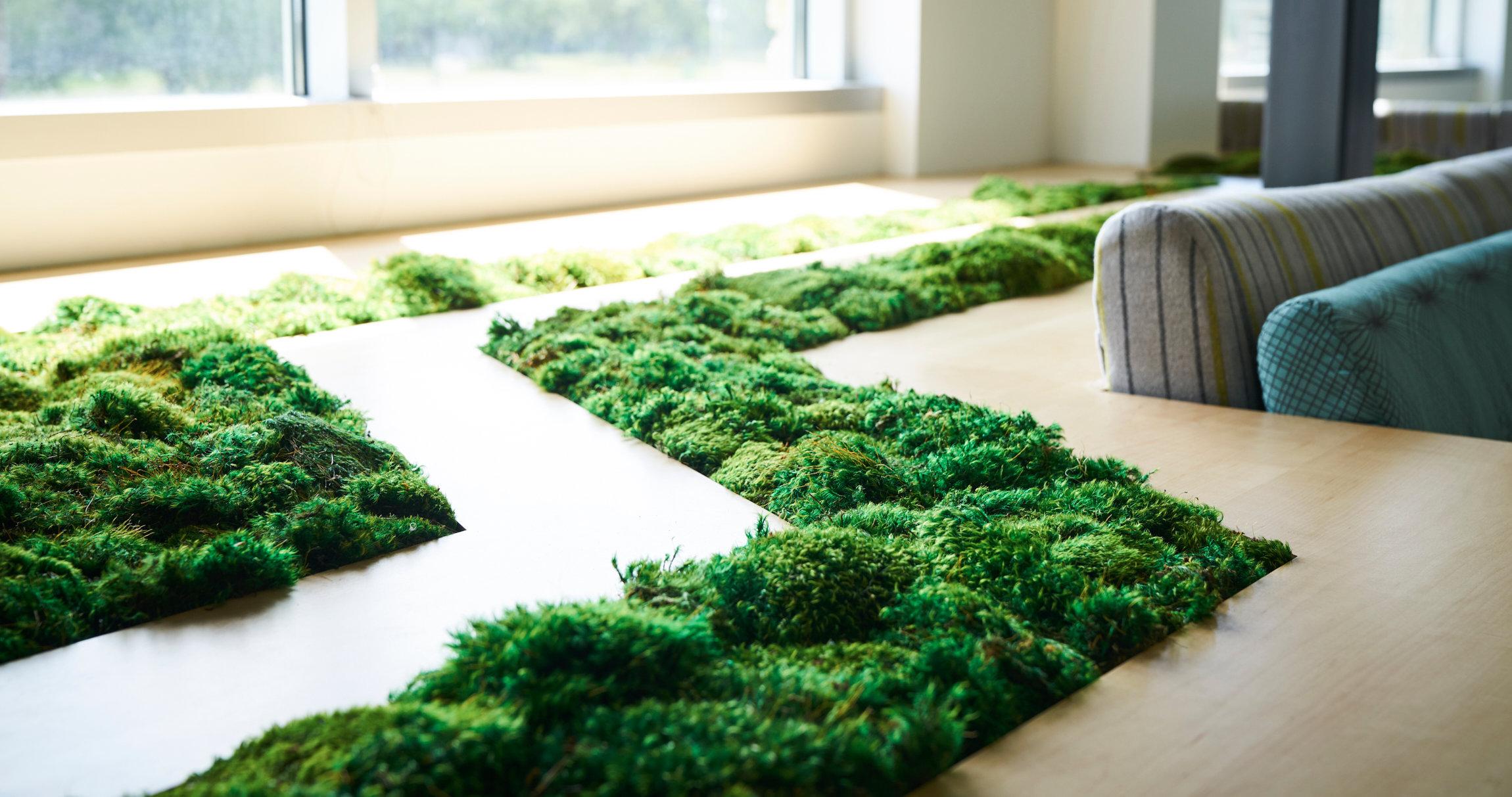 seatgrassdetail2.jpg