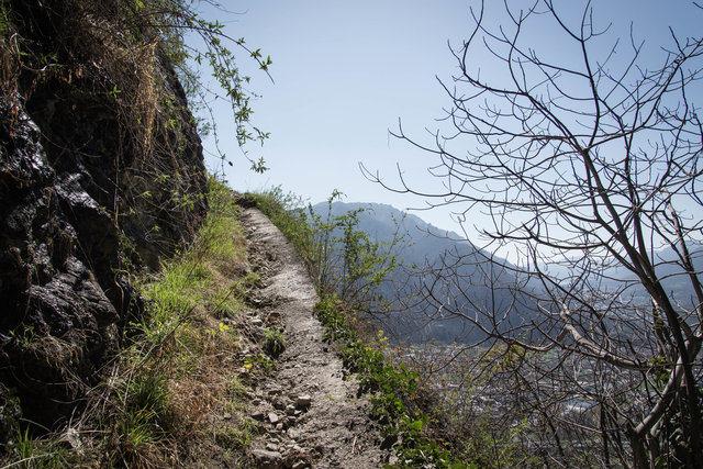 Mont'Orfano