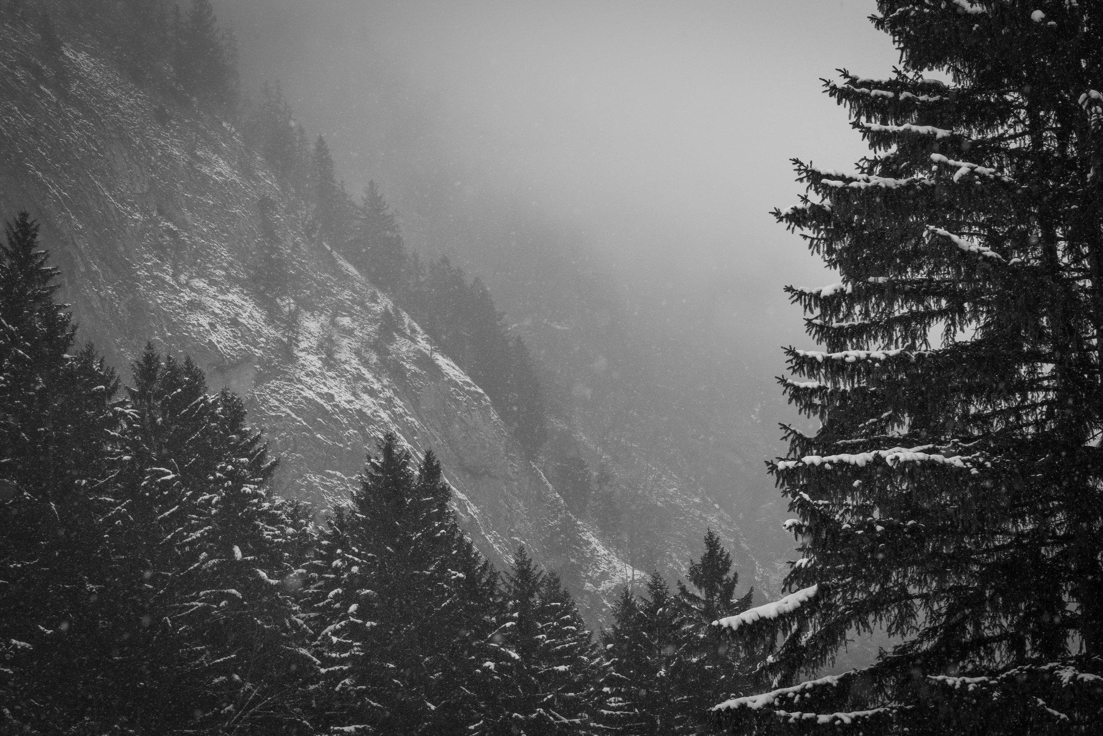 Appenzell im Nebel