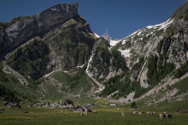 Die Alp und der Alpstein.