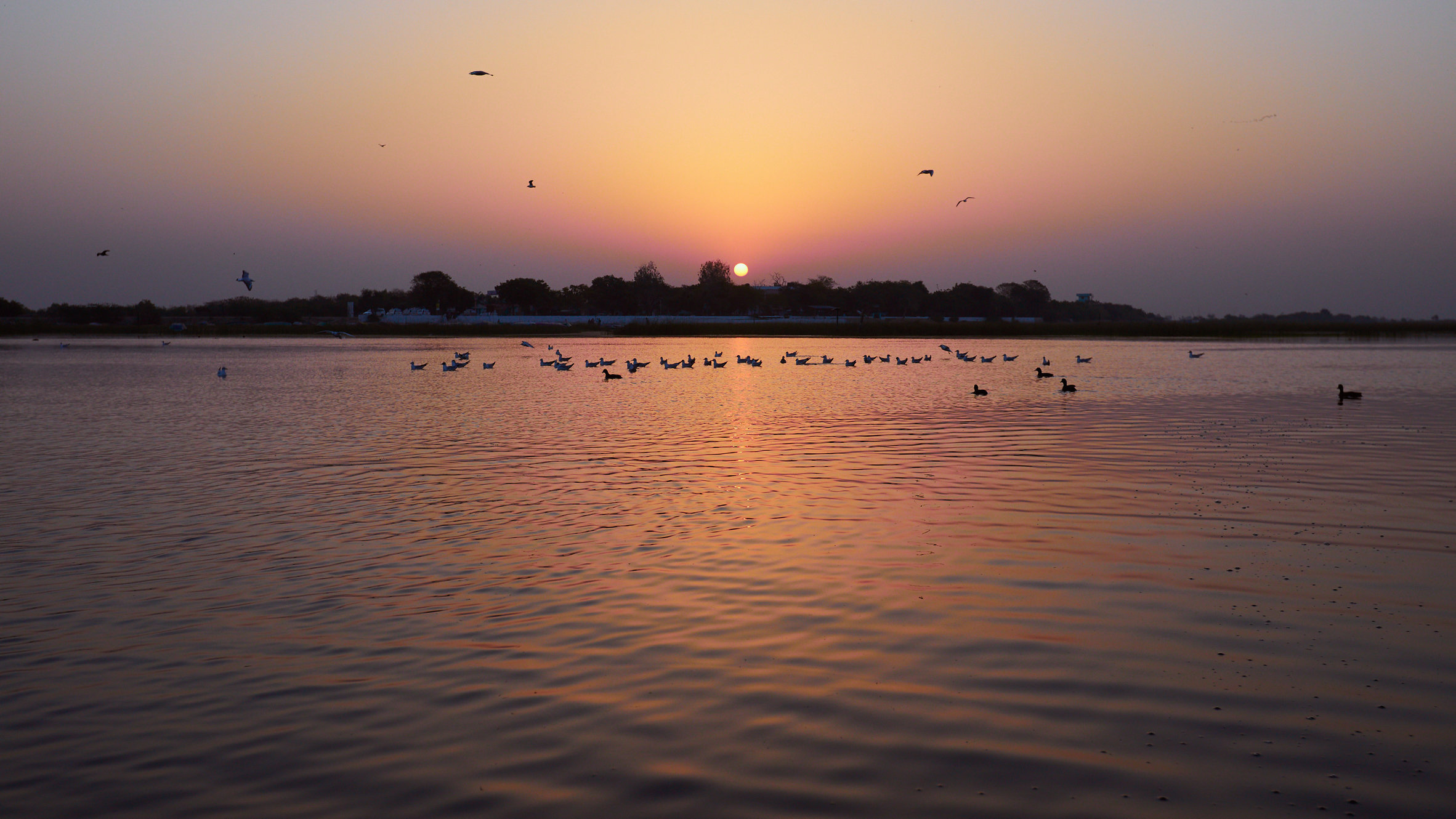 Pranidhi_Day3_Picture1.jpg