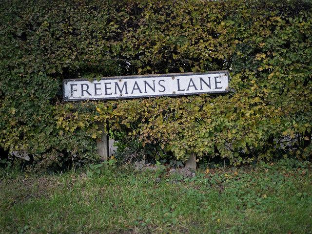 Freemans Lane, 2017