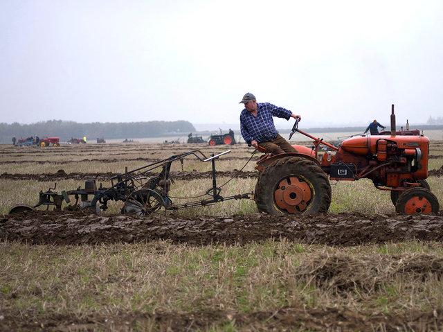 Ploughing, 2017