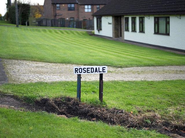 Rosedale, 2017