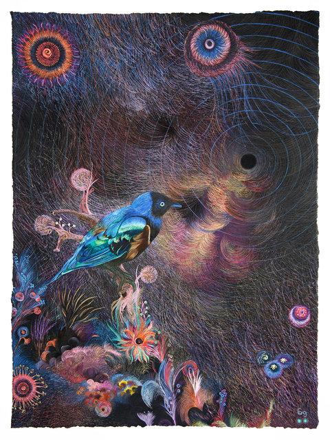 entangle • Blue Bird Black Hole