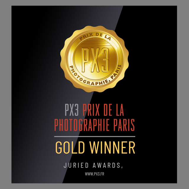 winners_badge.png
