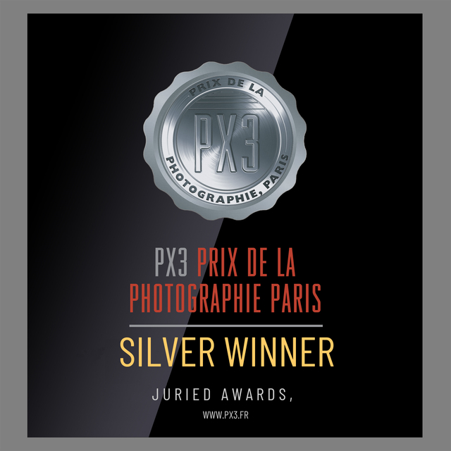 winners_badge (1).png