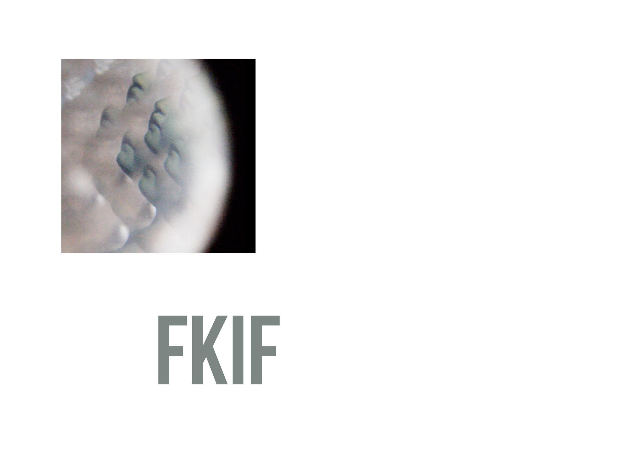 boek FKIF2.jpg