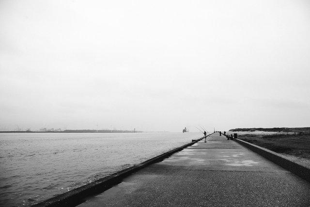 Rotterdam-2015-MH-07.jpg
