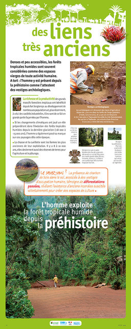 IRD-Forets-Panneau12-2011.jpg
