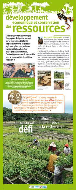 IRD-Forets-Panneau21-2011.jpg