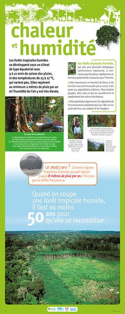 IRD-Forets-Panneau5-2011.jpg