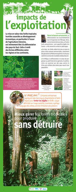 IRD-Forets-Panneau16-2011.jpg