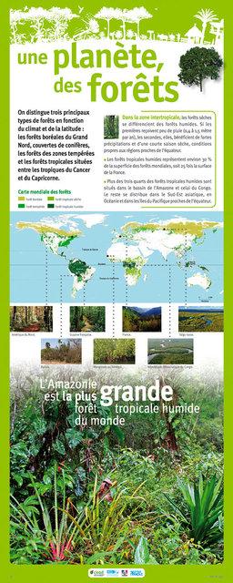 IRD-Forets-Panneau3-2011.jpg
