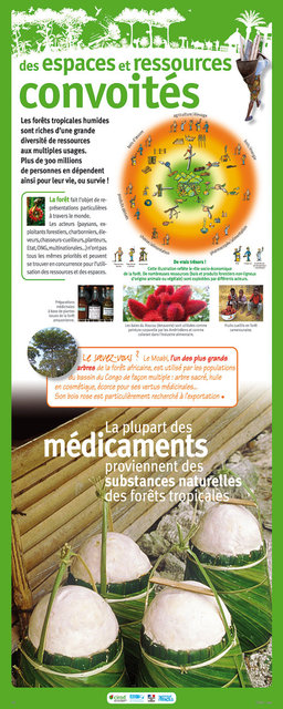 IRD-Forets-Panneau15-2011.jpg