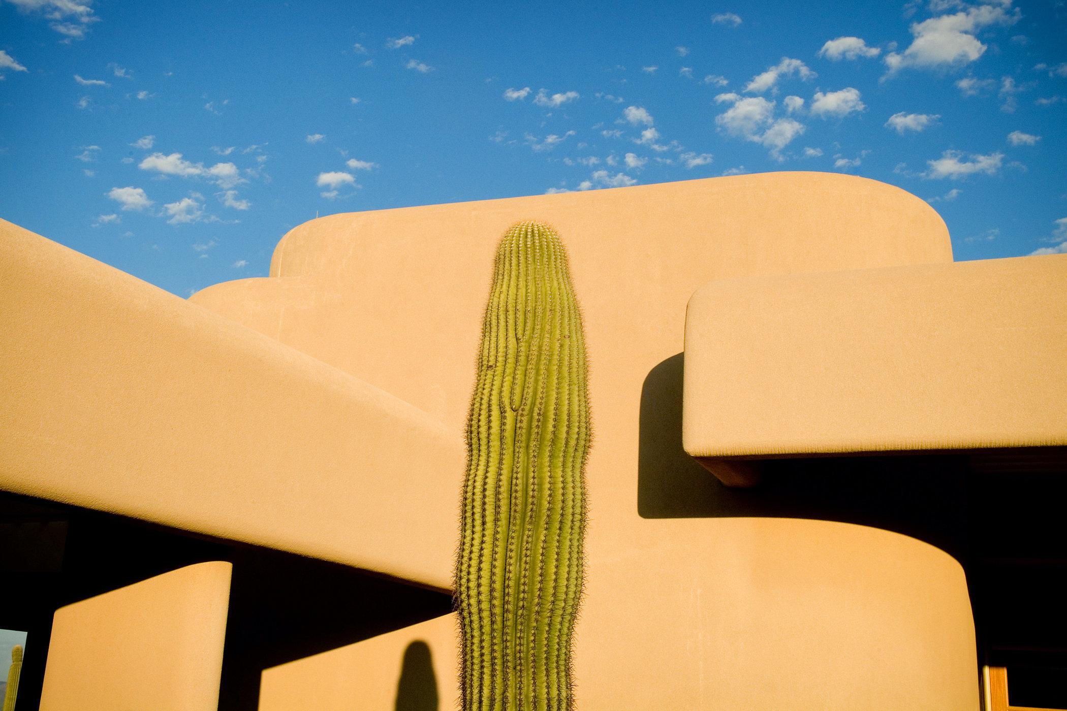 Saguaro West I
