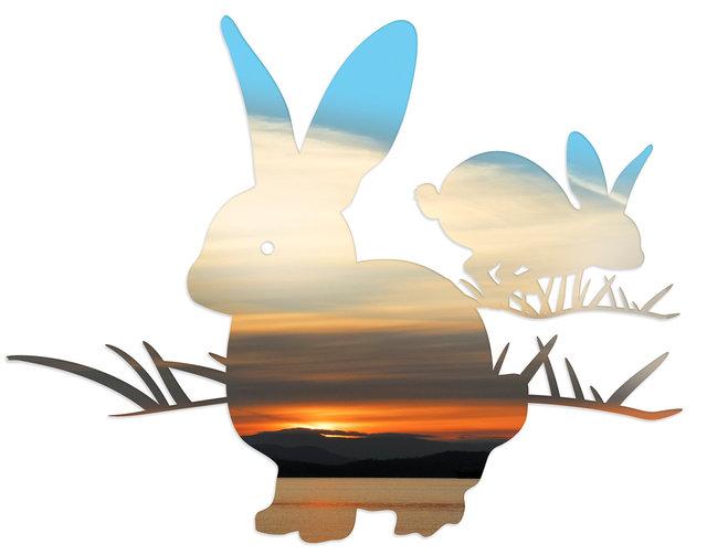 rabbit-05cd.jpg