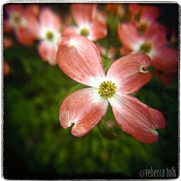 03-04-01-03 Offering.jpg