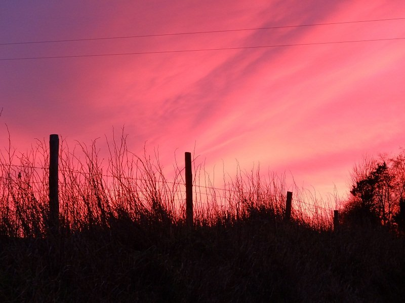 Sky at Night Shepherds Delight by Alison Gracie