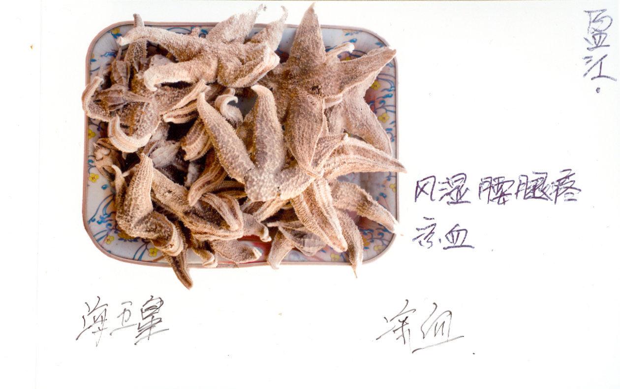 海五星   (with informations written by the traditonal pharmacist