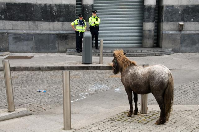 Horse Market, Smithfield