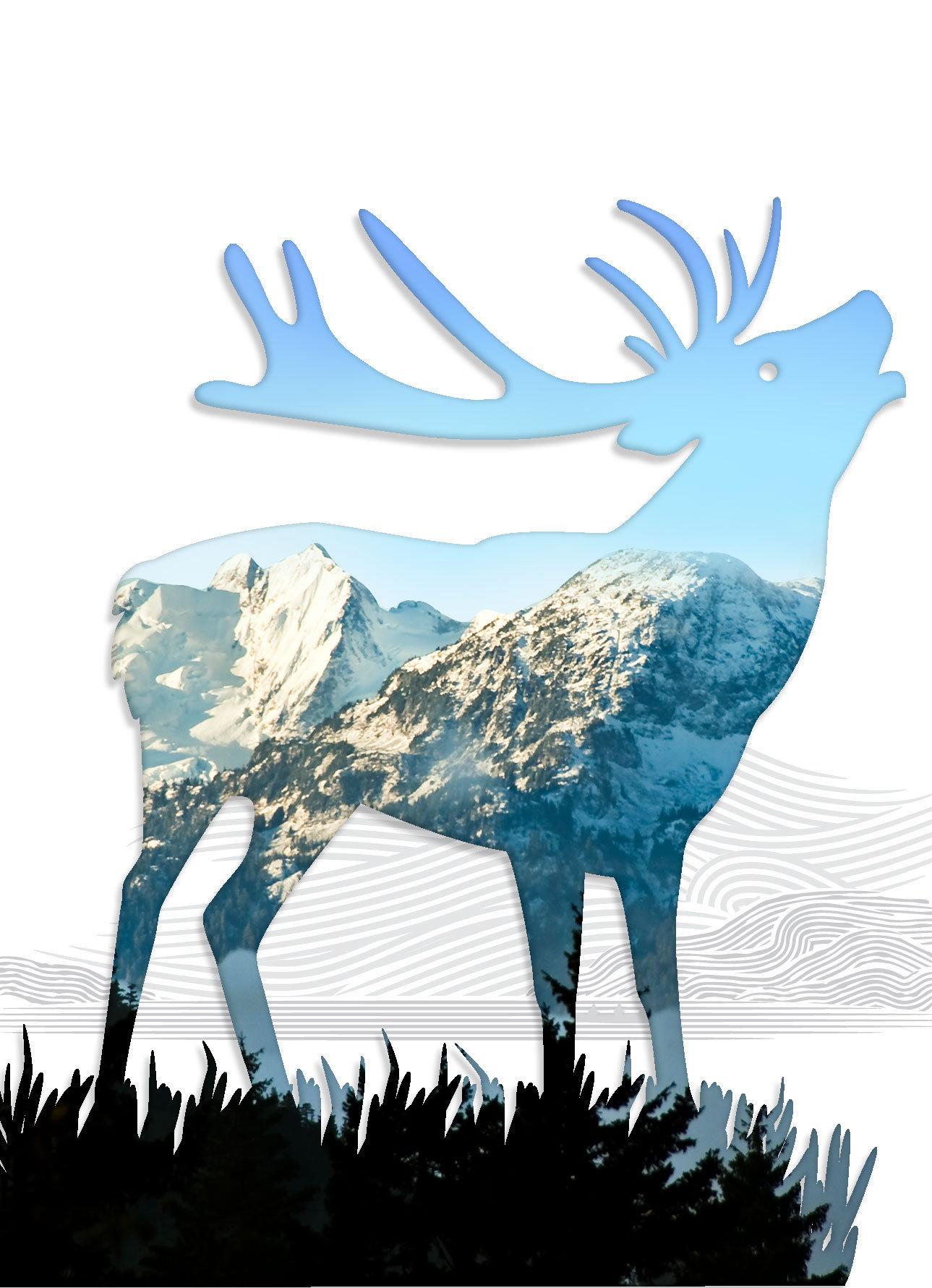 Elk-07.jpg