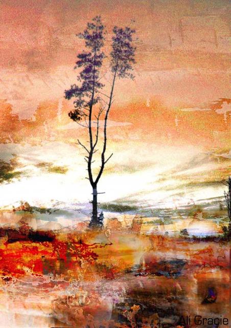 Pollution by Ali Gracie
