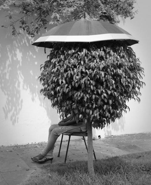 Wood_Michael_UmbrellaLady8x10.jpeg