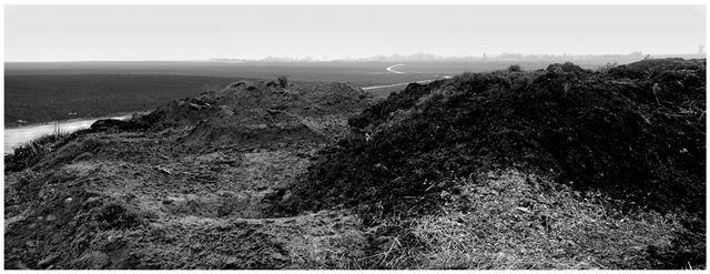 agricultural landscapes no 6.jpg