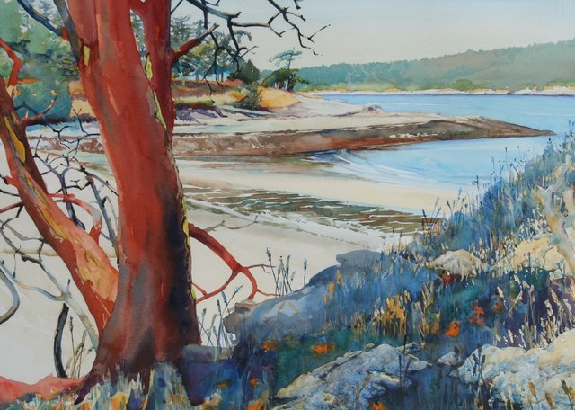 Dionisio Point Arbutus & Coon bay (Sold)
