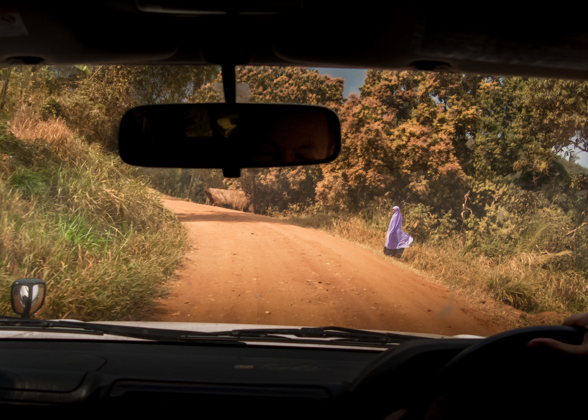 Tanzania,_Back_Seat_View-1762.jpg
