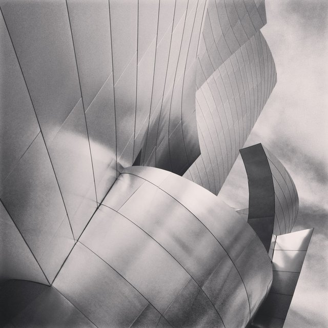 WALT DISNEY CONCERT HALL - B&W 8
