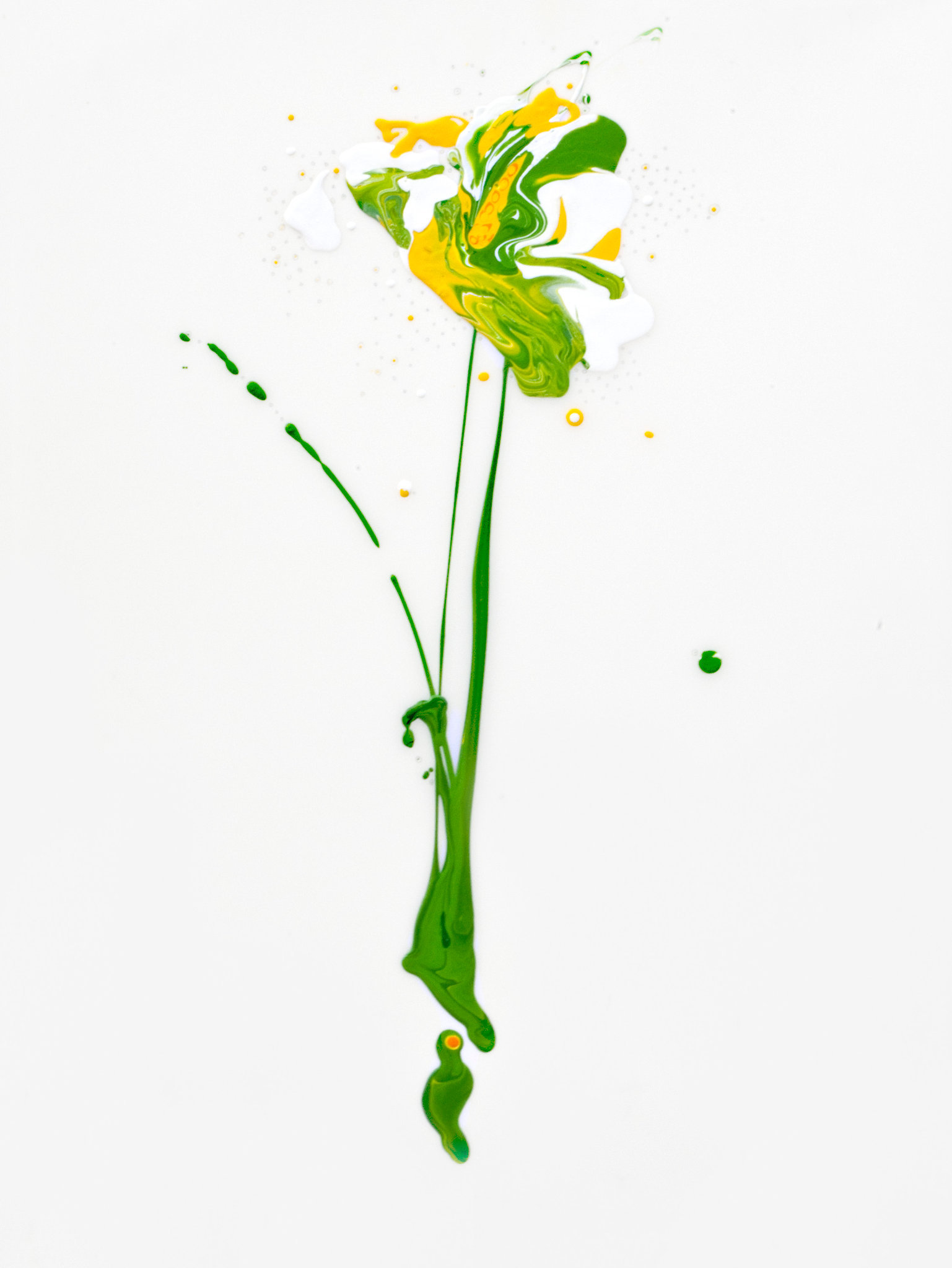 Flora XII