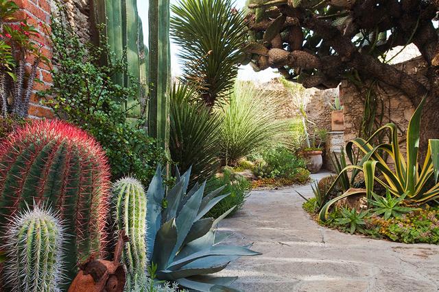 Pozos garden, Mexico