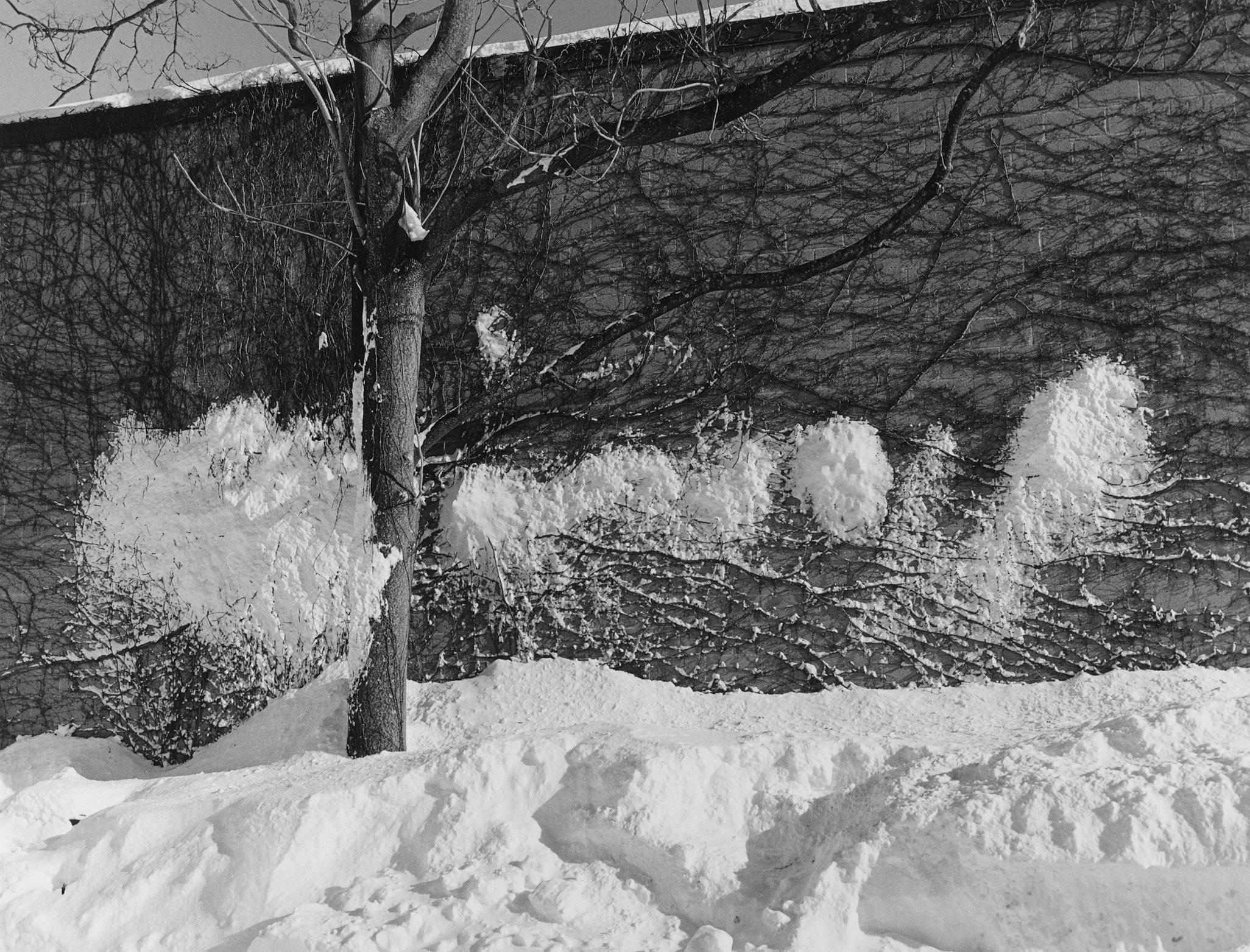 Snow on wall.jpg
