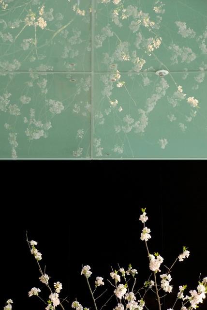 Ton van Bragt: Sakura's Mirror