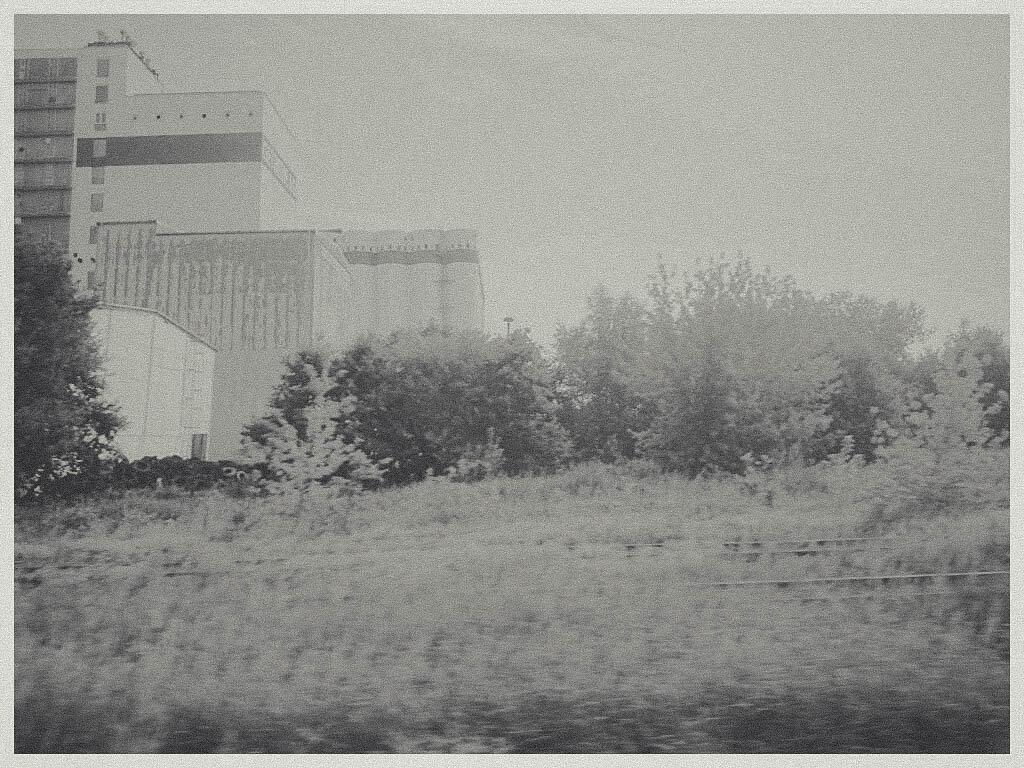 CameraZOOM-20140724085407064.jpg