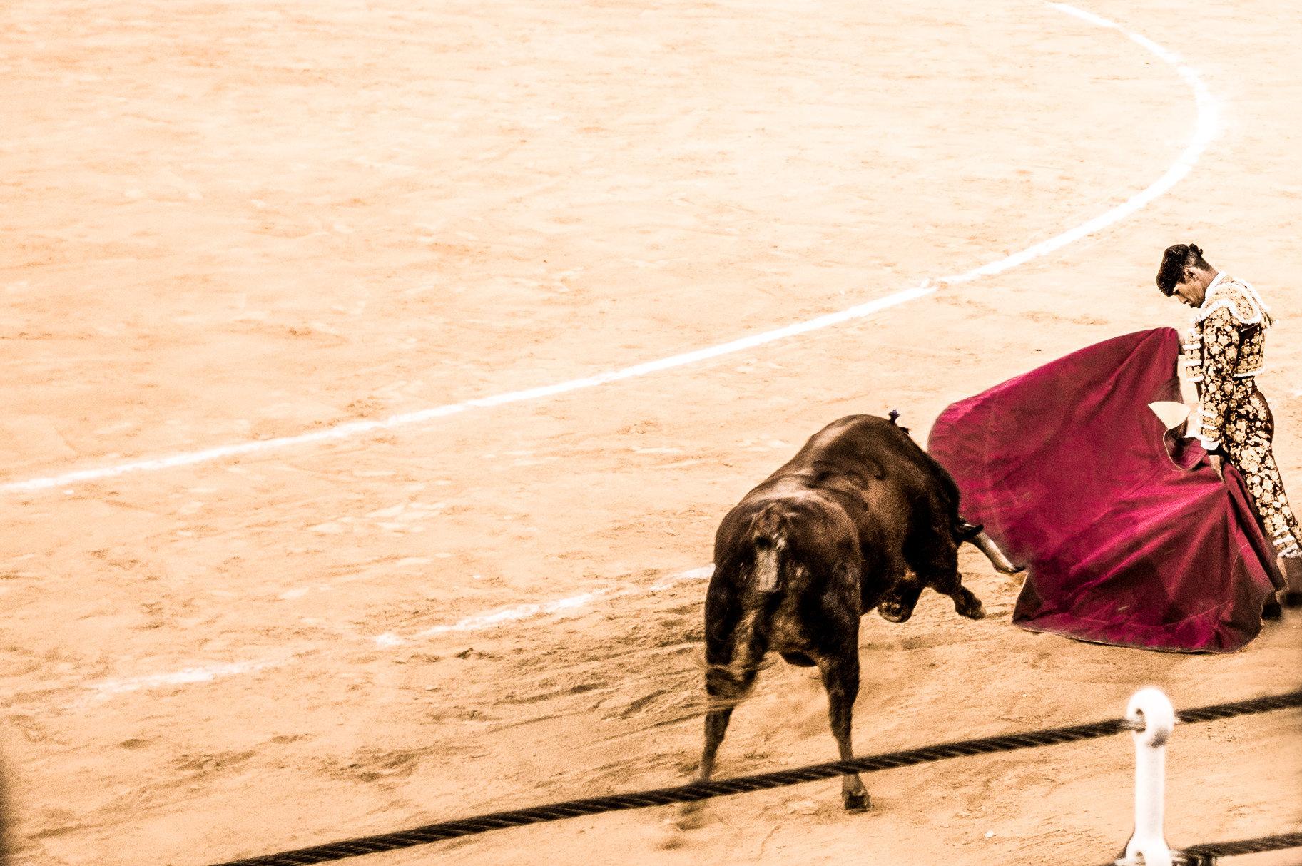 The Bullfight-189-bewerkt.jpg