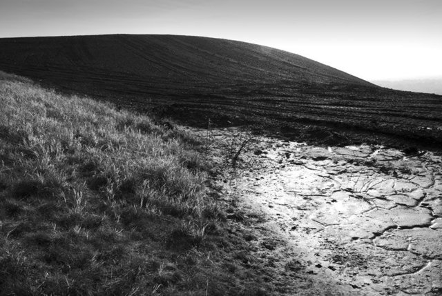 winterslag-zwart-wit-2.jpg