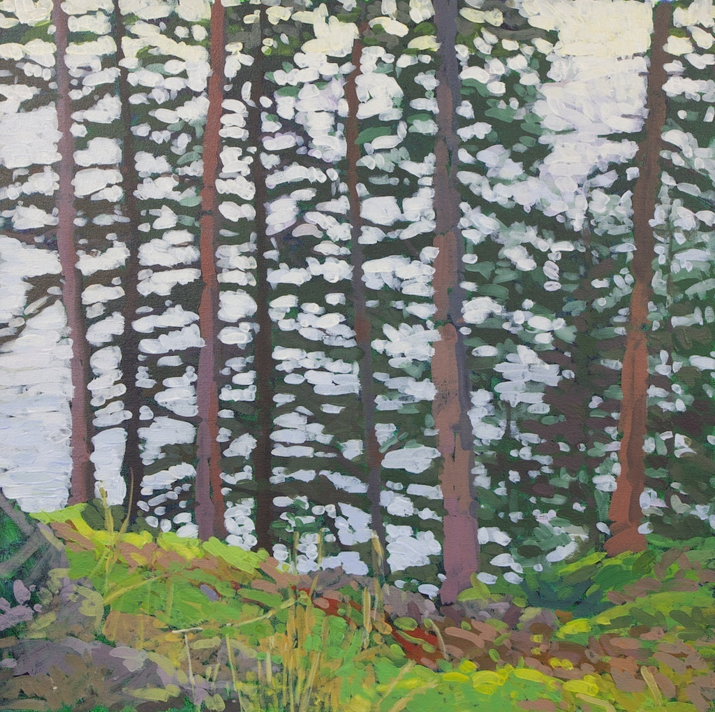 "Trees above Northeast Harbor, 2012, Acrylic on Canvas, 24"" x 24"" (NLA)"