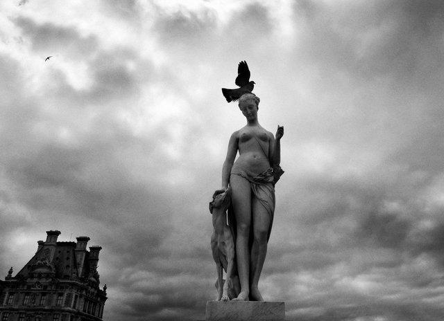 Yurko Dyachyshyn_(Paris)_26.JPG