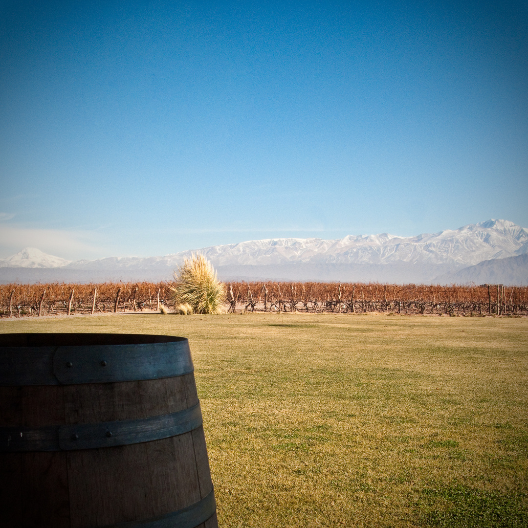 WinebarrelAndes.jpg