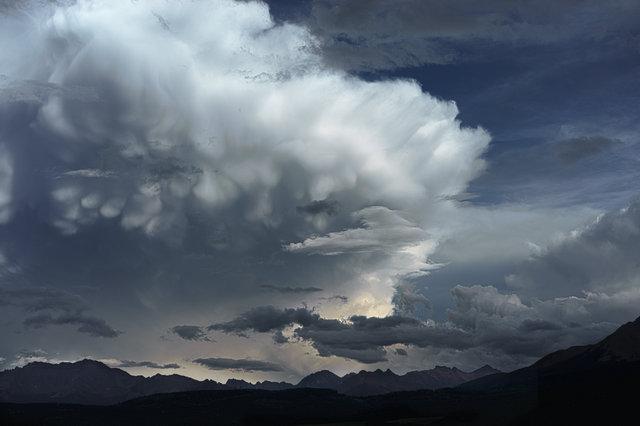 Mammals Clouds