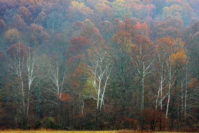 Autumn, southern Ohio