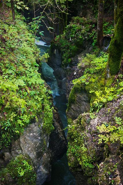 Slovenia Gorge