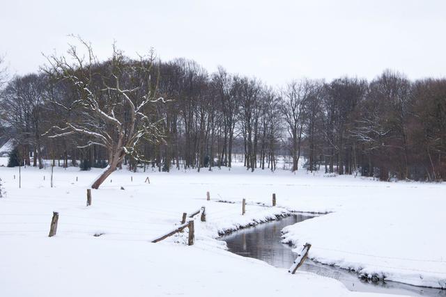 Beekdal in winter 2009/2010