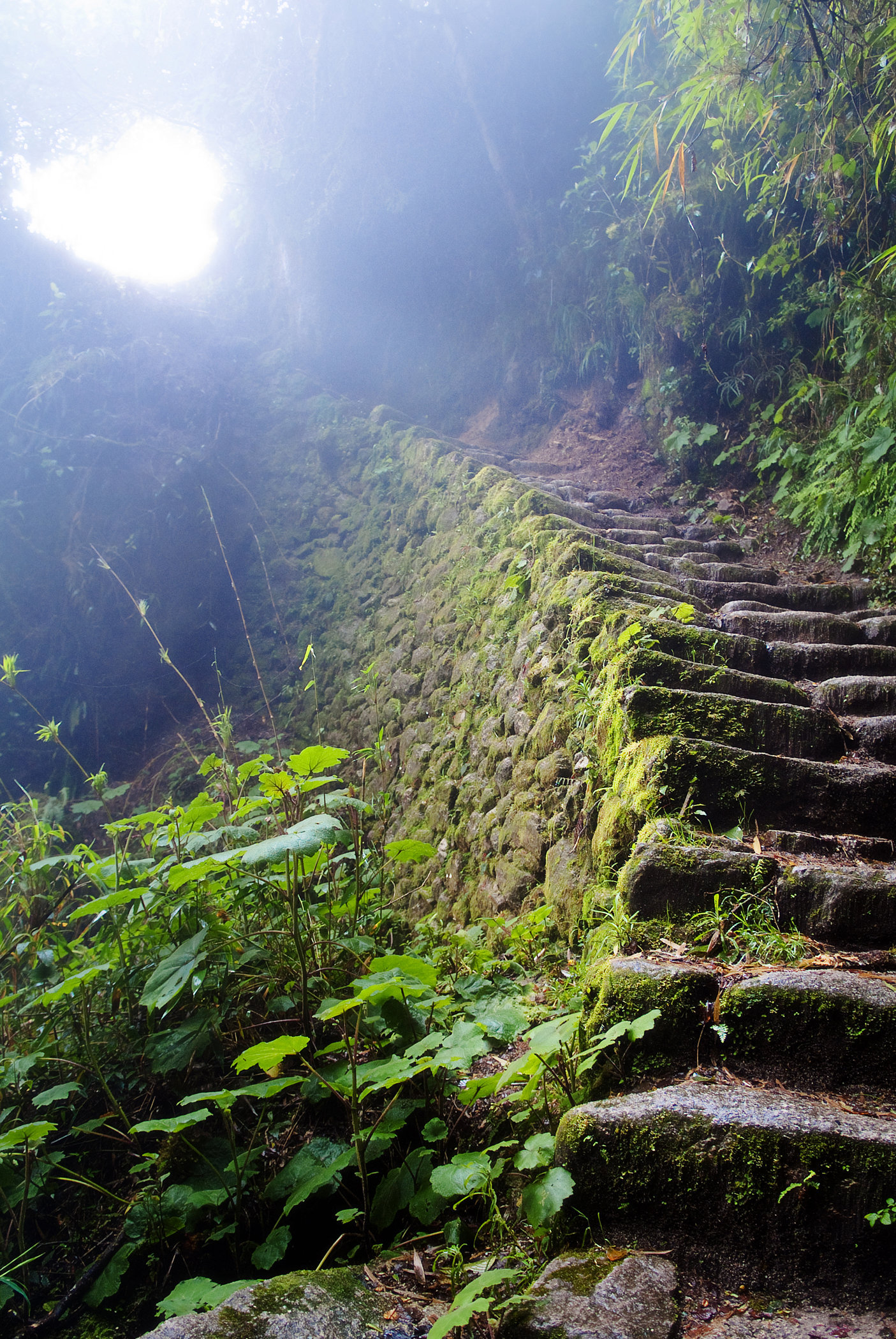 Stairway to Heaven - Inca Trail
