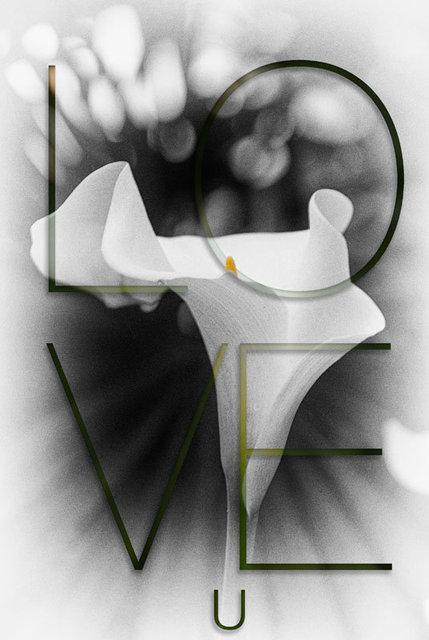 love-0686v.jpg